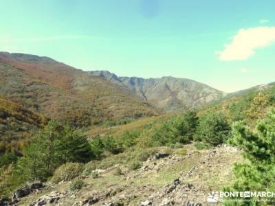 Parque Natural de Tejera Negra - Cantalojas - Guadalajara - Sierra de Ayllón;programa de actividade